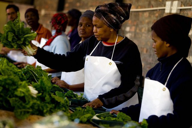 The Conservation, Food and Health Foundation